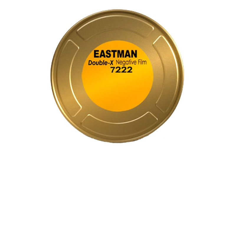 Eastman Double-X 250D or 200T